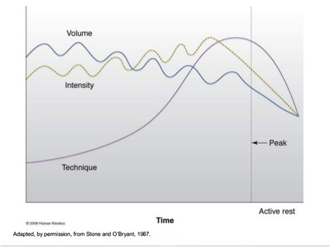 undulating periodization template - resistance training archives beyond motion