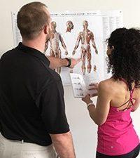 Beyond Motion pilates teacher training Anatomy Movement Science