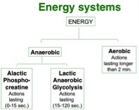 Energy Chart Nick Blog